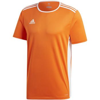 Vêtements Garçon T-shirts manches courtes adidas Originals - T-shirt arancione CD8366 ARANCIONE