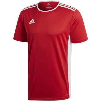 Vêtements Garçon T-shirts manches courtes adidas Originals - T-shirt rosso CF1038 ROSSA