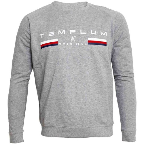 Vêtements Sweats Templum SUDADERA Gris