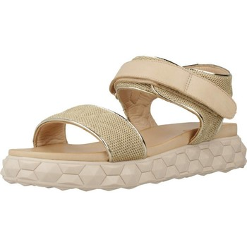 Chaussures Femme Sandales et Nu-pieds Inuovo 116004I Brun