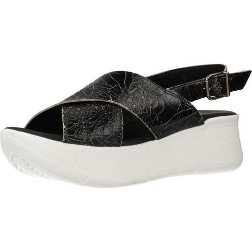 Chaussures Femme Sandales et Nu-pieds Clover 15719C Noir