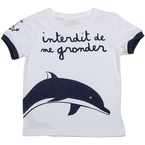 Vêtements Enfant T-shirts manches courtes Interdit De Me Gronder SEA Blanc