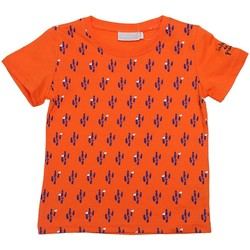 Vêtements Enfant T-shirts manches courtes Interdit De Me Gronder CANYON Orange