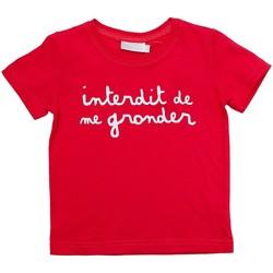 Vêtements Enfant T-shirts manches courtes Interdit De Me Gronder L'INTERDIT Rouge