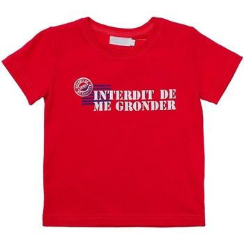 Vêtements Enfant T-shirts manches courtes Interdit De Me Gronder MIAMI Rouge