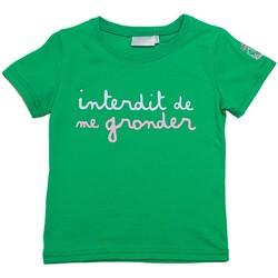 Vêtements Enfant T-shirts manches courtes Interdit De Me Gronder TENNIS Vert