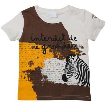 Vêtements Garçon T-shirts manches courtes Interdit De Me Gronder Touareg Beige clair