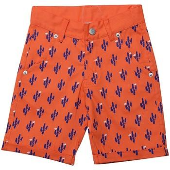 Vêtements Garçon Shorts / Bermudas Interdit De Me Gronder NEVADA Orange