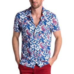 Vêtements Homme Chemises manches courtes Carisma Chemisette homme fleurie Chemisette 486 blanc Blanc