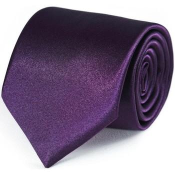 Vêtements Homme Cravates et accessoires Dandytouch Cravate unie Prune