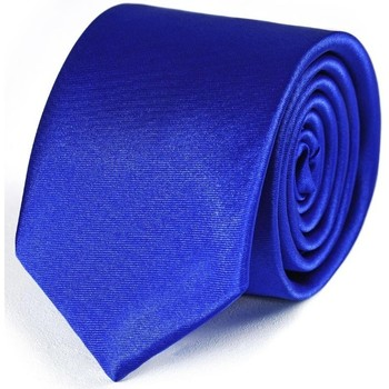 Vêtements Homme Cravates et accessoires Dandytouch Cravate Slim unie Gitane