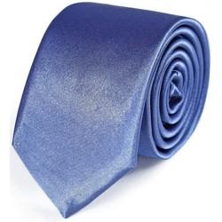Vêtements Homme Cravates et accessoires Dandytouch Cravate Slim unie Jean