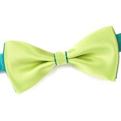 Vêtements Homme Cravates et accessoires Dandytouch Noeud papillon BeCool Sligo vert