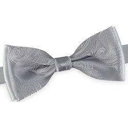 Vêtements Homme Cravates et accessoires Dandytouch Noeud papillon Atlantis Argent-Gris