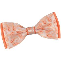 Vêtements Homme Cravates et accessoires Dandytouch Noeud papillon Elo Orange-Saumon