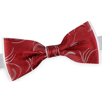 Vêtements Homme Cravates et accessoires Dandytouch Noeud papillon Kasimir Rojo Blanc-Rouge