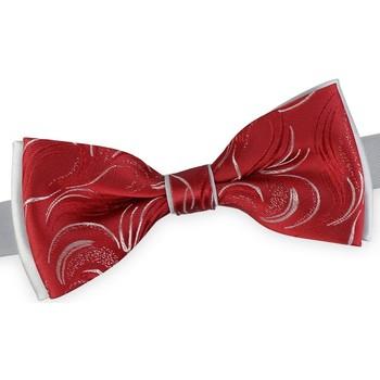 Vêtements Homme Cravates et accessoires Dandytouch Noeud papillon Kasimir Rojo Argent-Rouge
