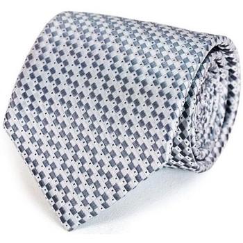 Vêtements Homme Cravates et accessoires Dandytouch Cravate Damas Argent
