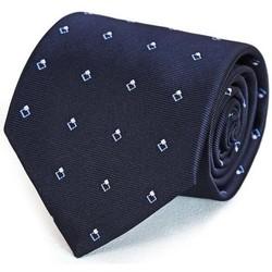 Vêtements Homme Cravates et accessoires Dandytouch Cravate Diam Marine