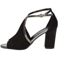 Chaussures Femme Sandales et Nu-pieds Linea Uno A-F165SP NOIR