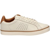 Chaussures Homme Baskets basses Le Coq Sportif COURTACE PREMIUM mabrs-bianco-taupe
