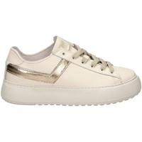 Chaussures Femme Baskets basses Pony TOP STAR OX LITE c1-bianco-oro