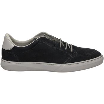 Chaussures Homme Baskets basses Frau AMALFI blugr-blu-grigio
