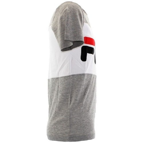 Tshirt Homme Day  Fila  t-shirts manches courtes  homme  gris