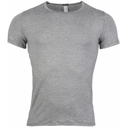 Vêtements Homme T-shirts manches courtes Hom - tee-shirt GRIS