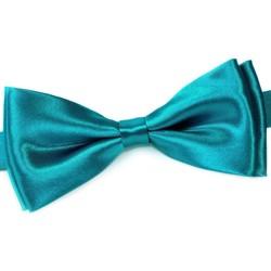 Vêtements Homme Cravates et accessoires Dandytouch Noeud papillon uni Turquoise