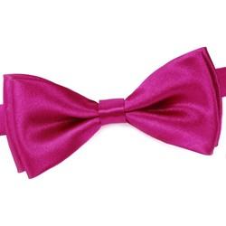 Vêtements Homme Cravates et accessoires Dandytouch Noeud papillon uni Fuchsia