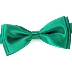 Vêtements Homme Cravates et accessoires Dandytouch Noeud papillon uni Canard