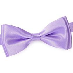 Vêtements Homme Cravates et accessoires Dandytouch Noeud papillon uni Mauve