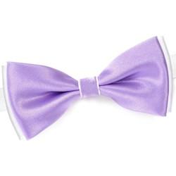 Vêtements Homme Cravates et accessoires Dandytouch Noeud papillon BeCool Neath Mauve