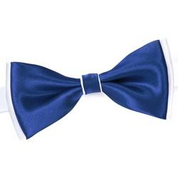 Vêtements Homme Cravates et accessoires Dandytouch Noeud papillon BeCool Neath Gitane