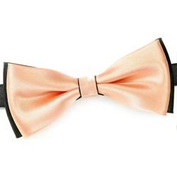 Vêtements Homme Cravates et accessoires Dandytouch Noeud papillon BeCool Conwy Saumon