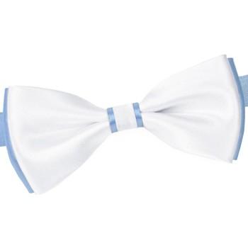 Vêtements Homme Cravates et accessoires Dandytouch Noeud papillon BeCool York Ciel