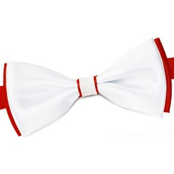 Vêtements Homme Cravates et accessoires Dandytouch Noeud papillon BeCool York Rouge