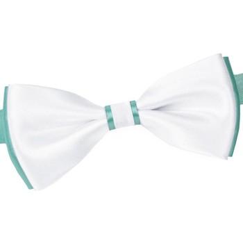 Vêtements Homme Cravates et accessoires Dandytouch Noeud papillon BeCool York Turquoise