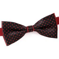 Vêtements Homme Cravates et accessoires Dandytouch Noeud papillon Canol Rouge