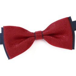 Vêtements Homme Cravates et accessoires Dandytouch Noeud papillon Treeble Rouge