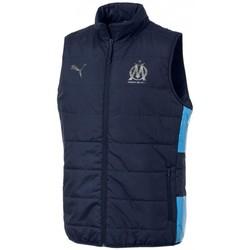 Vêtements Homme Doudounes Puma DOUDOUNE Bleu
