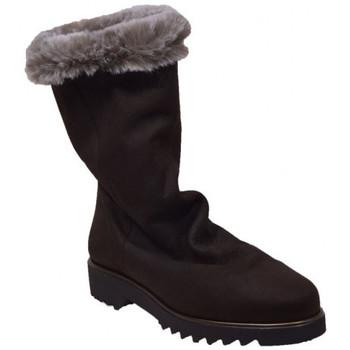 Chaussures Femme Bottes de neige Hirica orele Marron