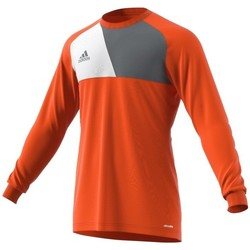 Vêtements Homme Sweats adidas Originals Assita 17 GK Junior Orange