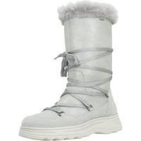 Chaussures Femme Bottes de neige Geox D HOSM0S B ABX Gris