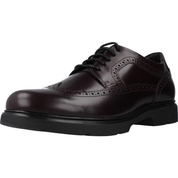 Chaussures Homme Derbies Geox U ARRALL Marron