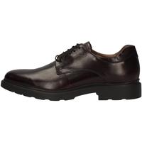 Chaussures Homme Derbies Nero Giardini A901141U BORDEAUX