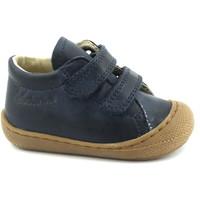 Chaussures Enfant Chaussons bébés Naturino NAT-CCC-12904-B Blu