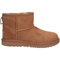Chaussures Fille Bottes de neige UGG UGKCLMCN1017715K châtaigne