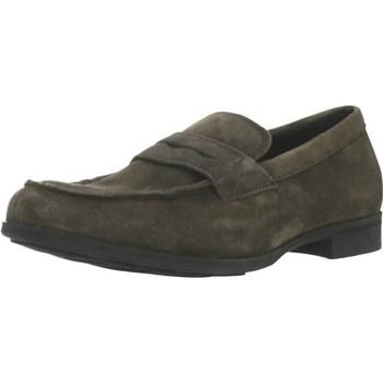 Chaussures Homme Mocassins Geox U BESMINGTON Vert